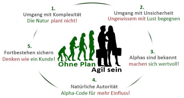 Ohne Plan agil sein